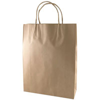 CAPRI KRAFT PAPER CARRY BAG B1 TWIST HANDLE SMALL BROWN PACK 250